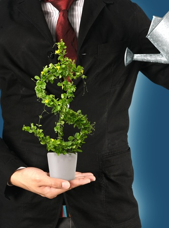 Businessman and  watering a pot tree with US dollar.