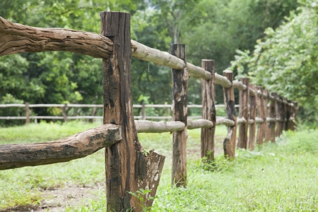 close up, Old wooden fence on green meadow