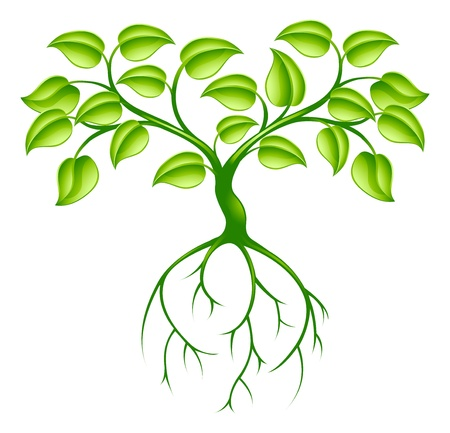 Illustration for Green tree graphic design concept with long roots - Royalty Free Image
