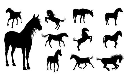 Ilustración de A set of high quality detailed horse silhouettes - Imagen libre de derechos