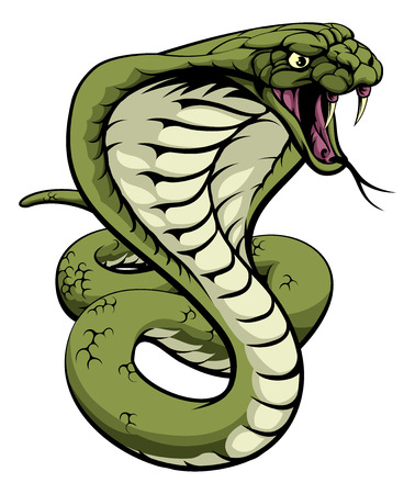 Illustration pour An illustration of a king cobra snake with hood out about to strike - image libre de droit
