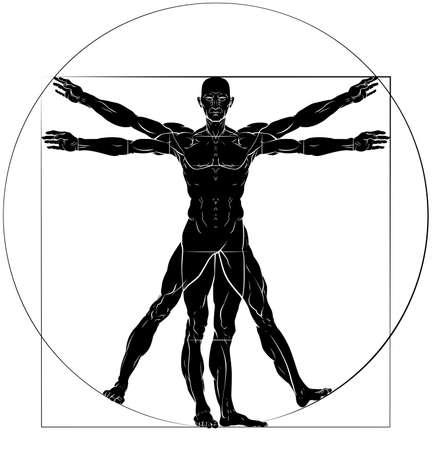 Illustration pour A figure   man anatomy illustration - image libre de droit