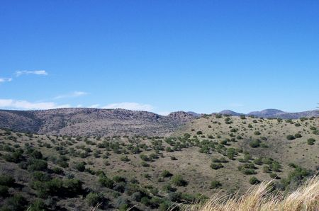 Chihuahuan Desert mountain scene with tall grass in foreground