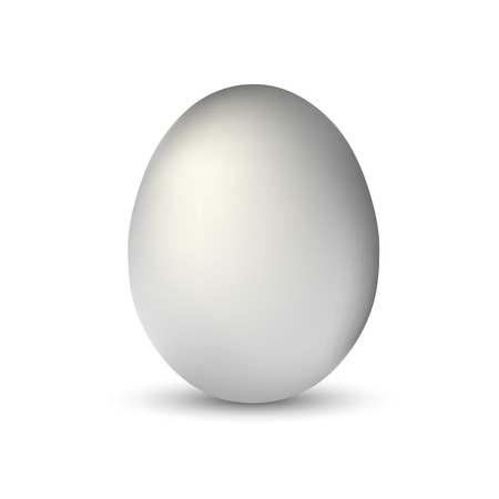 white single realistic animal egg isolated with soft shadow on white background vector illustration EPS10