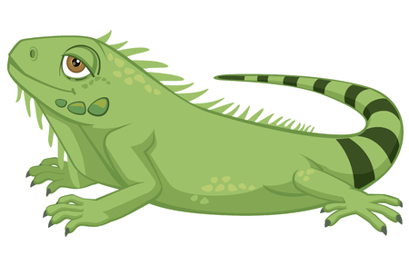 Ilustración de Iguana cartoon illustration on white background. - Imagen libre de derechos