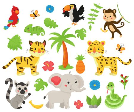 Photo pour Set of jungle animals and tropical plants. Cute cartoon kawaii characters: wild cats, snake, elephant, tropical birds, lemur. Isolated on white background. - image libre de droit