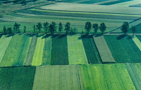 Birds Eye View of the Agricultural Fields and Parcel.