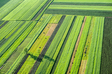 Photo pour Birds Eye View of the Agricultural Fields and Parcel. - image libre de droit