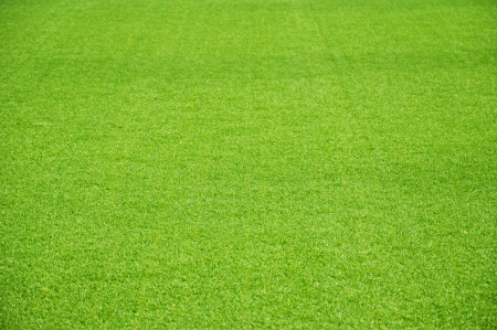 Green artificial lawn as background