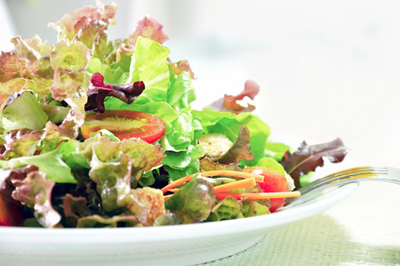 Mixed vegetables healthy salad in white dish
