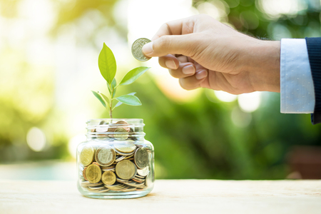 Plant growing from money in the glass jar - financial metaphor,  savings and investment  concept