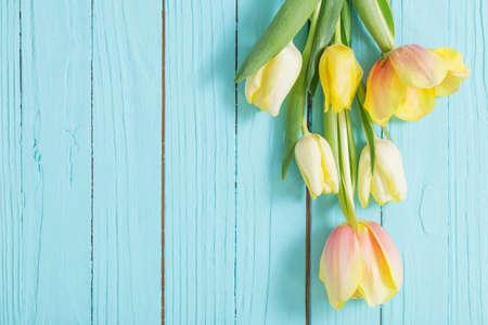 Photo pour yellow tulips on blue wooden background - image libre de droit