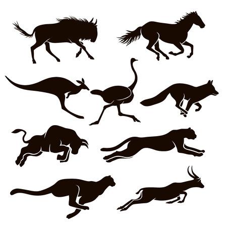 Foto de Collection of vector silhouettes running animal - Imagen libre de derechos