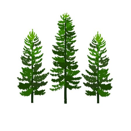 Illustration pour green pines tree isolated on white background vector - image libre de droit