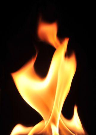 Fire flames raising in a dark background