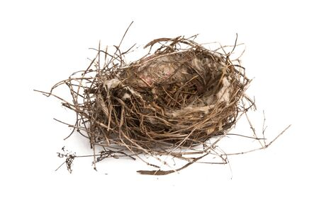 Photo pour bird nest isolated on white background - image libre de droit