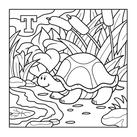 T Is For Turtle Illustration