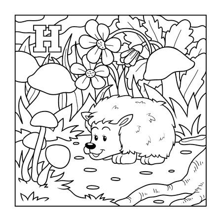 H Is For Hedgehog Illustration