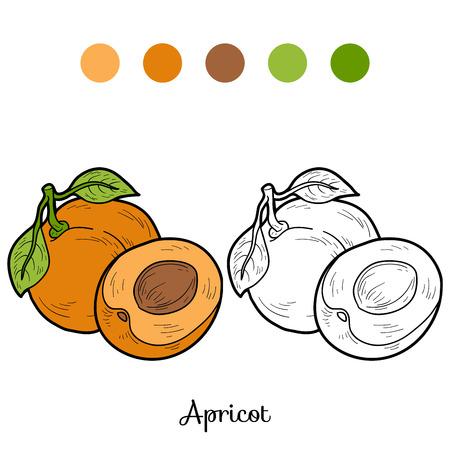 Coloring book: fruits and vegetables (apricot): Lizenzfreie ...