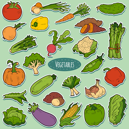 Illustration for Color set with vegetables, vector cartoon stickers for children - Royalty Free Image