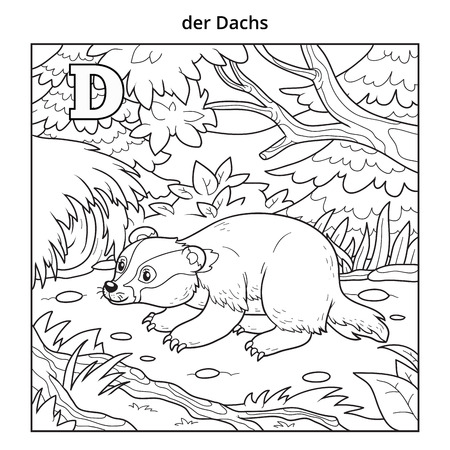 German Alphabet - Badger Illustration