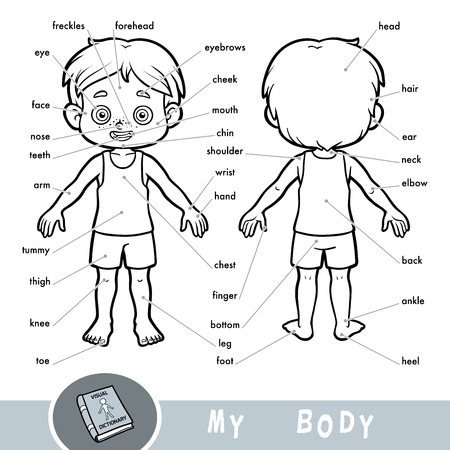 Illustration pour Cartoon visual dictionary for children about the human body. My body parts for a boy.  - image libre de droit