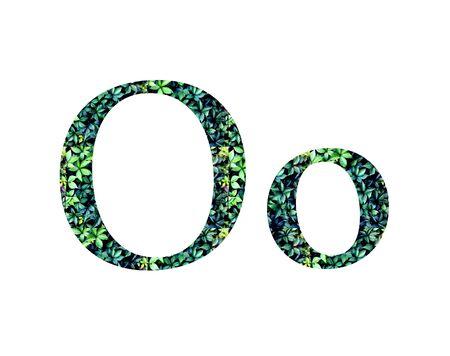 Foto de alphabet, letters  from green grape leaves. Letter O - Imagen libre de derechos