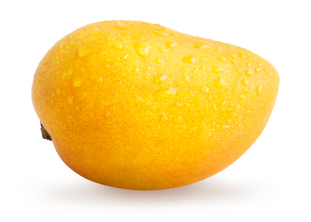 Photo for Mango fruit with water drops isolated - Royalty Free Image