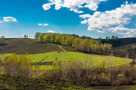 Photo pour green grass on a burnt hill trees and clouds - image libre de droit