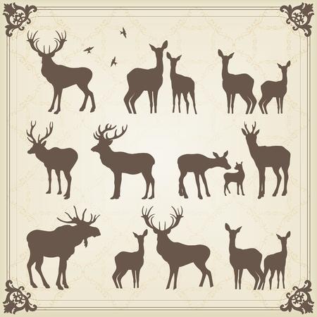 Vintage deer and moose illustration collection