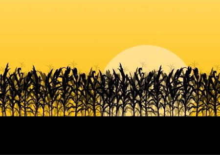 Illustration pour Corn field detailed countryside landscape illustration background vector - image libre de droit