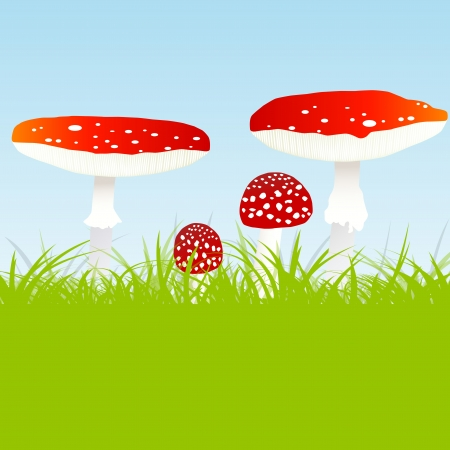 Fly agaric mushroom family vector background concept