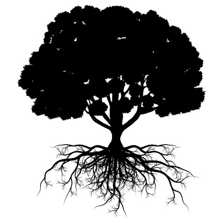 Illustration pour Tree of life vector background abstract shape stylized tree with roots made by imagination - image libre de droit
