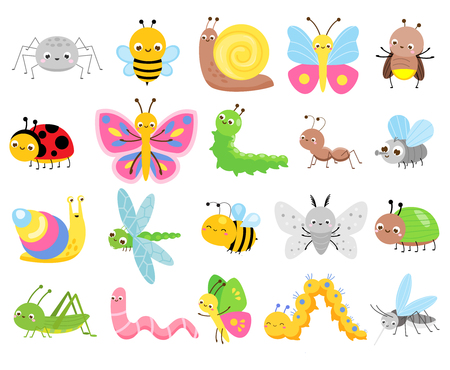 Illustration for Cute insects. Big set of cartoon insects for kids and children. Butterflies, snail, spider, moth and many other funny bugs creatures - Royalty Free Image