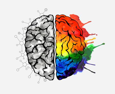 Ilustración de Concept of the human brain - Imagen libre de derechos