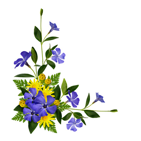 Photo pour Periwinkle and daisy flowers decoration isolated on white - image libre de droit