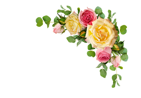 Photo for Pink and yellow rose flowers with eucalyptus leaves in a corner arrangement isolated on white background. Flat lay. Top view. - Royalty Free Image