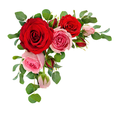 Photo pour Red and pink rose flowers with eucalyptus leaves in a corner arrangement isolated on white background. Flat lay. Top view. - image libre de droit
