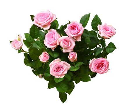 Photo for Pink rose flowers in a heart shape arrangement isolated on white - Royalty Free Image