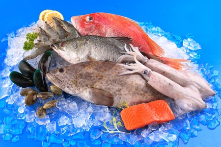 Photo for seafood - Royalty Free Image