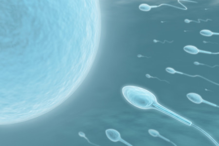 Sperm (Only one will get in)