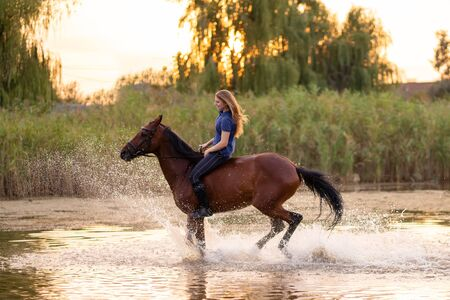 Photo pour A young girl riding a horse on a shallow lake. A horse runs on water at sunset. Care and walk with the horse. Strength and Beauty. - image libre de droit