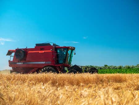 Foto für Wheat harvesting in the summer. Red harvester working in the field. Golden ripe wheat harvest agricultural machine harvester on the field - Lizenzfreies Bild