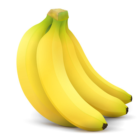 Illustration pour Banana fruit close up. Bunch of bananas isolated on white background. Qualitative vector illustration about banana, agriculture, fruits, cooking, gastronomy, etc - image libre de droit