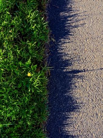 unkempt grass edge bodering a path