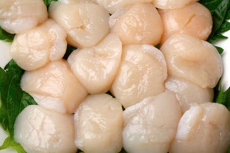 Photo pour Sashimi of scallops - image libre de droit