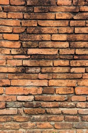 Brick Wall Texture Brick wal