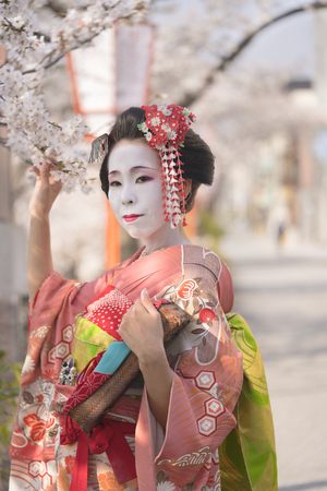 Geisha in kimono with kanzashi and holding a branch in Kyoto's Gion district.