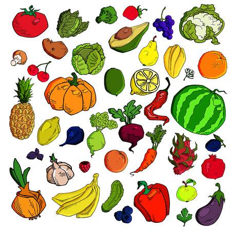 Illustration pour Mega collection of premium quality vector illustrations of fruits and vegetables - image libre de droit