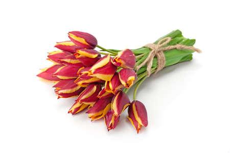 Foto für Bouquet of bright red tulips isolated on white background. - Lizenzfreies Bild